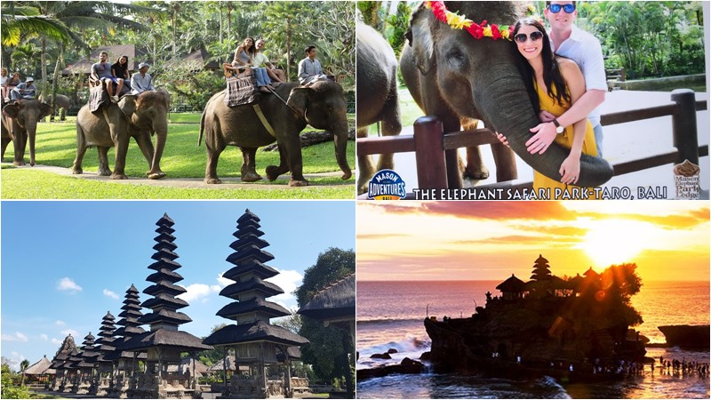 BCD-108: Mason Elephant Ride + Tanah Lot Temple Tour 1