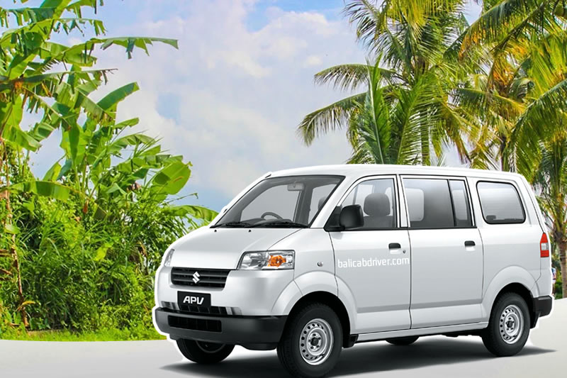 How To Choose Bali Driver for Hire? 9