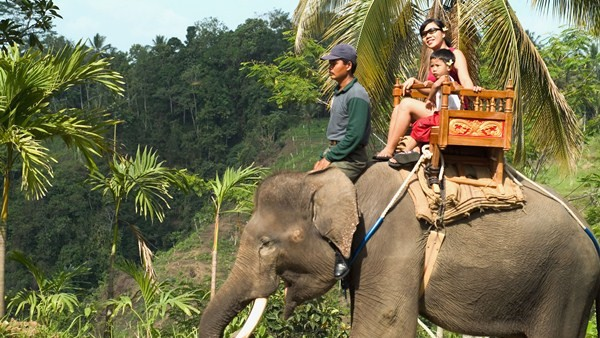 Elephant Ride - Bali Elephant Camp 2