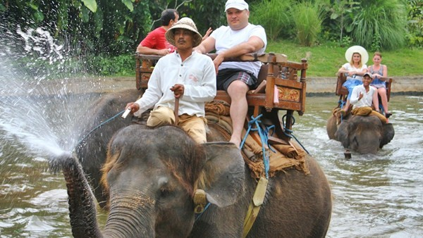 Elephant Ride - Bali Elephant Camp 5