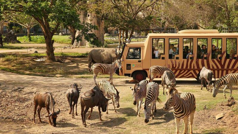 Bali Safari Park ticket price