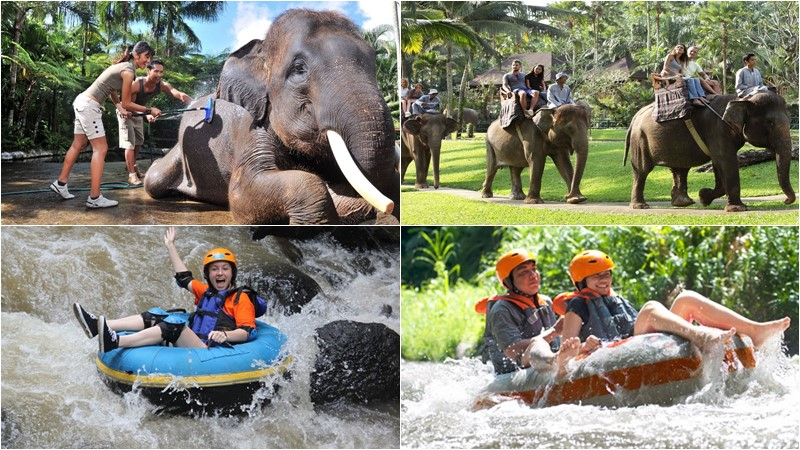 BCD-105: River Tubing + Bali Bathing Elephant 2