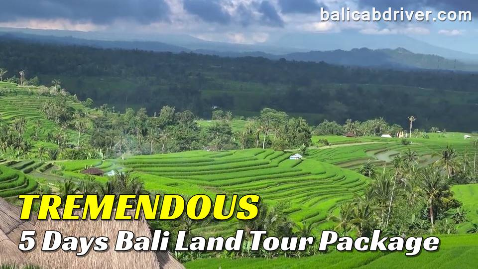 Tremendous 5 Days Bali Land Tour Package 2