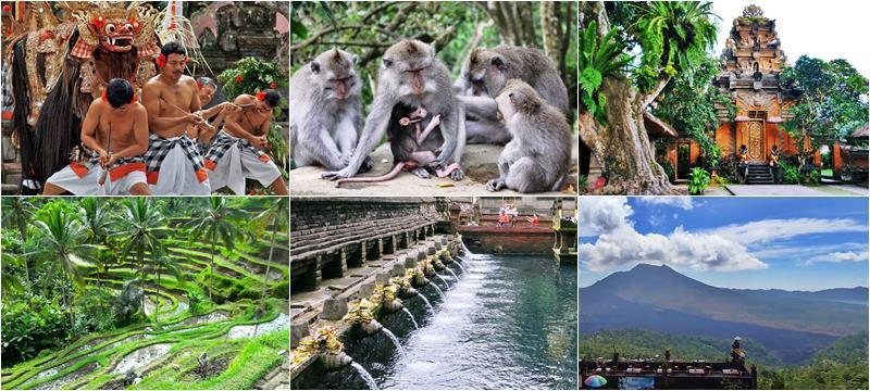 Gorgeous Kintamani Bali Tour Volcano 2019-2020 2