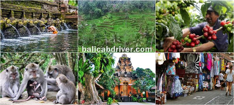 Popular Purification Tour Bali 2019-2010 3