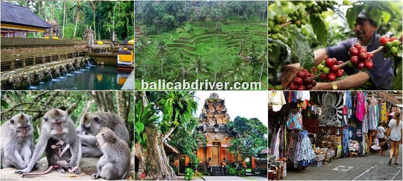 Popular Purification Tour Bali 2019-2010 3