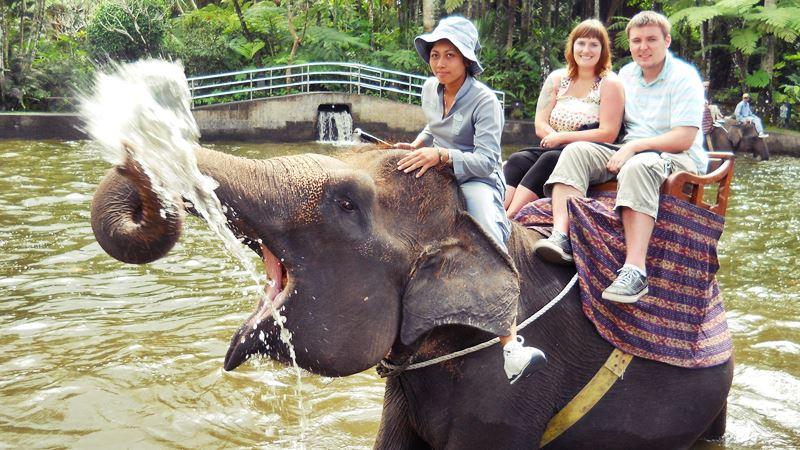 Elephant Safari Park Taro Ubud 4