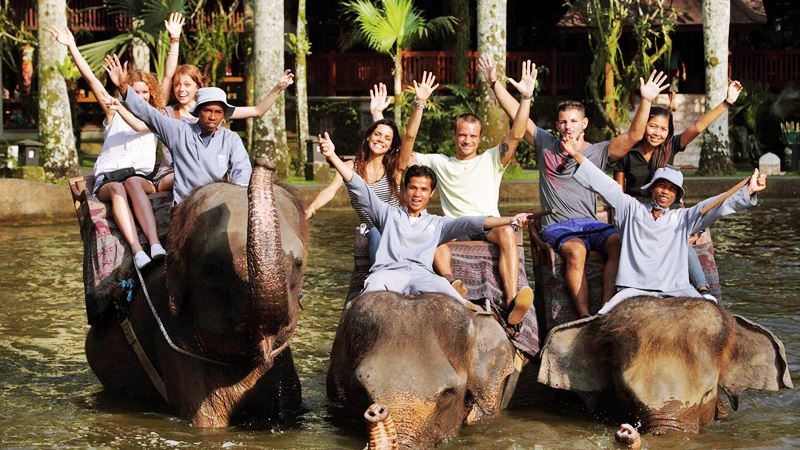 A Day Tour at Mason Elephant Park with Experience Driver Bali 3