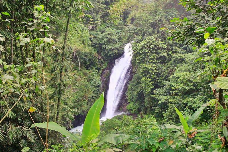 Scenic Drive to Amazing Gitgit Waterfall with Experience Bali Cab Driver 3