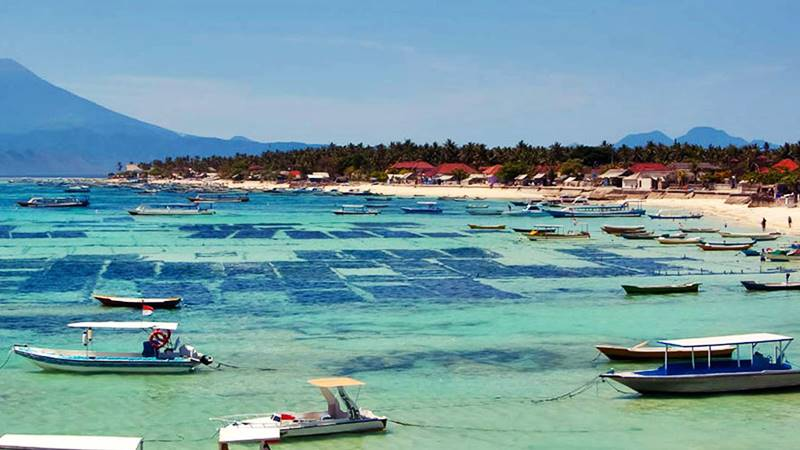 The Amazing Underwater Activities at Lembongan Island For Your Bali Vacation 3
