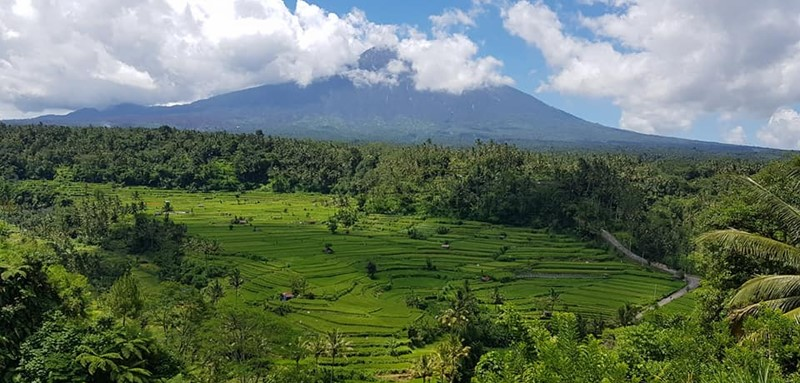 Travel with English Bali Driver To East Bali Edelweis Park 6