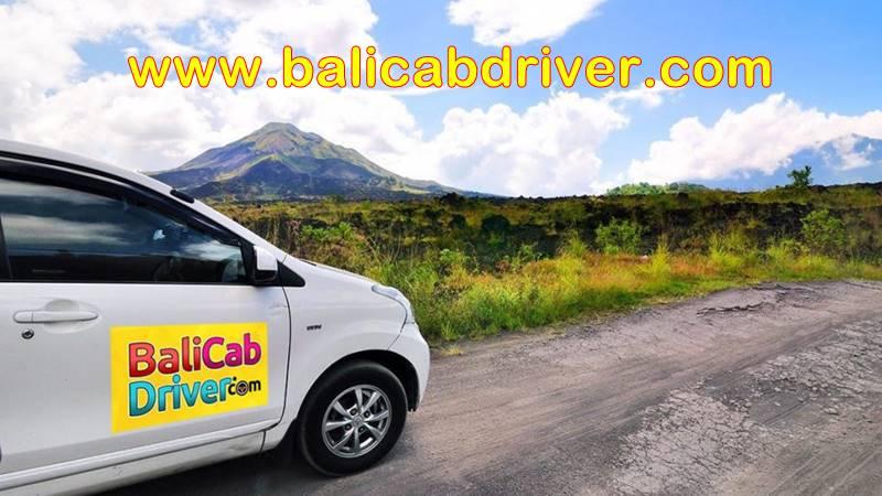 Private Driver Bali 2