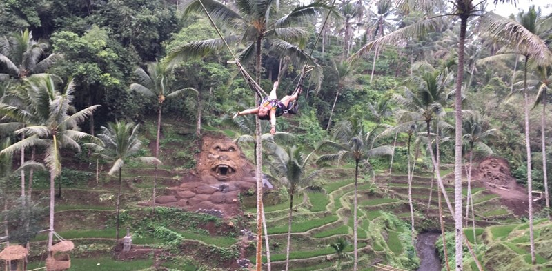 A Day Tour Combination to Bali Swing Accompanied by Our English Bali Driver-Guide. 13
