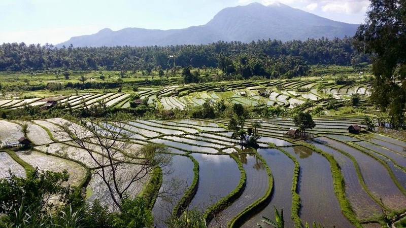 Take a Day trip to Lempuyang Temple with Bali Cab Driver 5