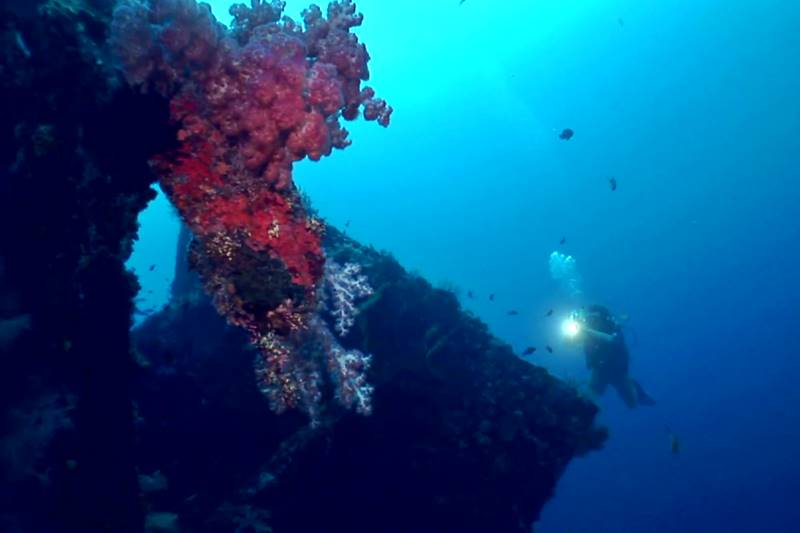 Get an Amazing Experience Diving in Tulamben Karangasem Bali 3