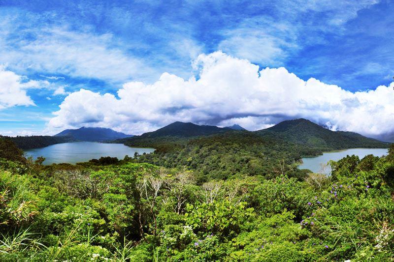 Stunning Banyumala Twin Waterfall Tour 4