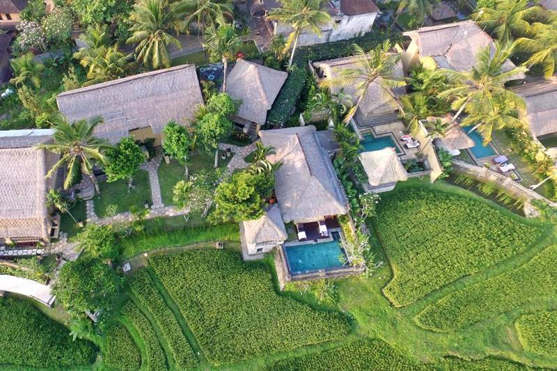 Wapa Di Ume Resort - Serene Heaven In The Natural Rice Field of Ubud 3